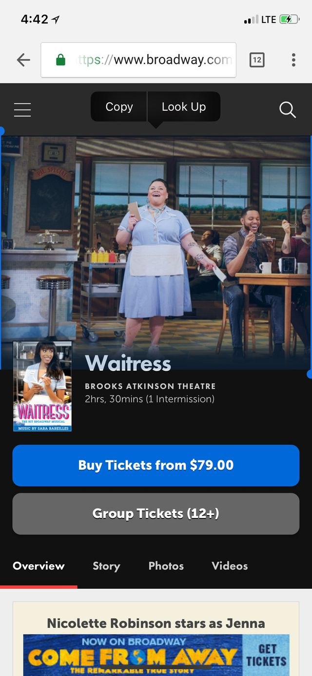 Waitress: A New Musical | Official Broadway Site