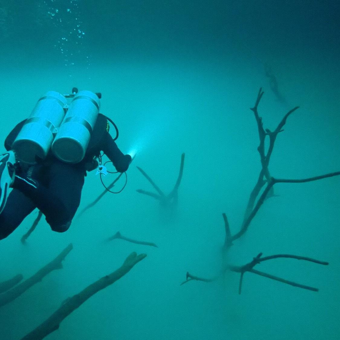 Mexico's Cenote Angelita