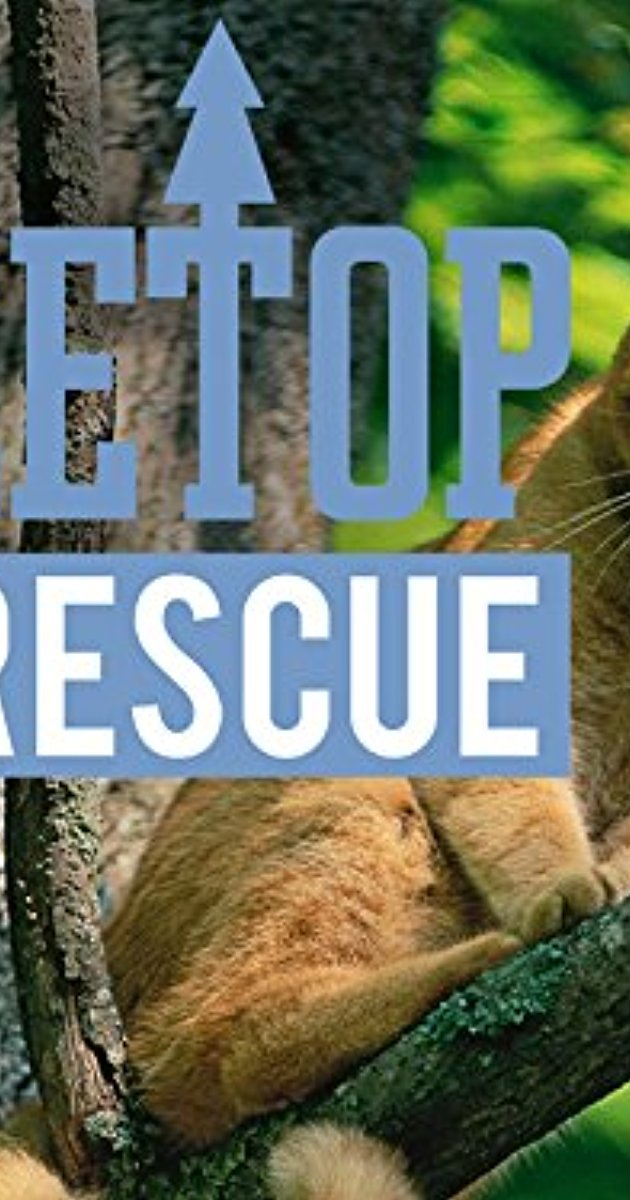 Treetop Cat Rescue (TV Series 2015– ) image